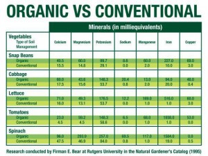 Organic food shopping ingredients versus conventional