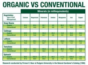 Organic food shopping ingredients versus conventional
